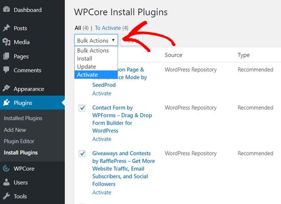 افزونه ها را به صورت عمده با WPCore فعال کنید