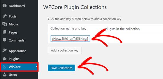 کلید جمع آوری افزونه WPCore را در وردپرس ذخیره کنید
