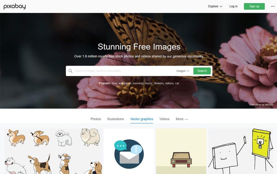 یکی دیگر از منابعی که میتوانید تصاویر رایگان با کیفیت بالا دانلود کنید سایت pixabay می باشد